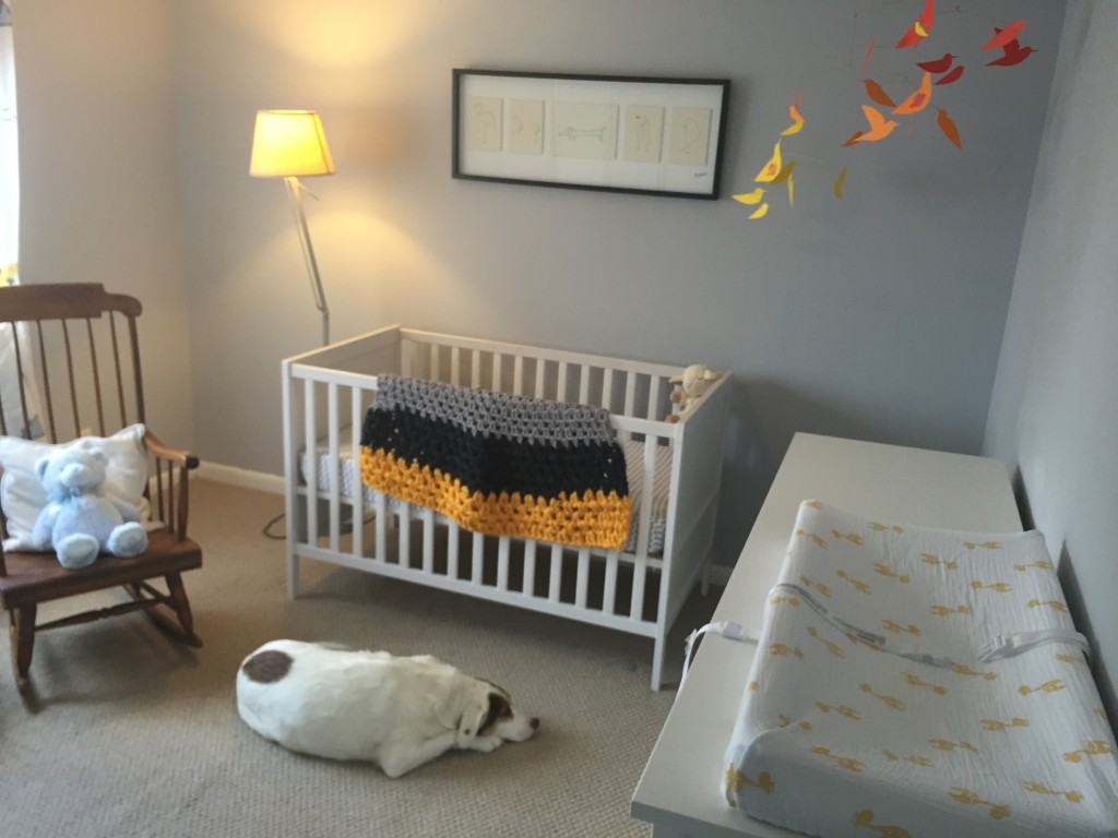 Tucker already knows his place in the nursery.